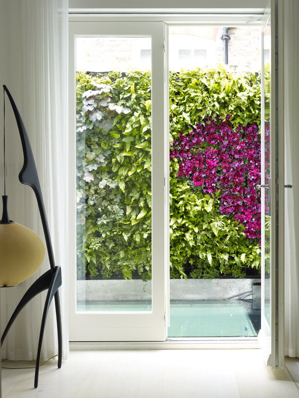 Hardwood French Doors by SJL